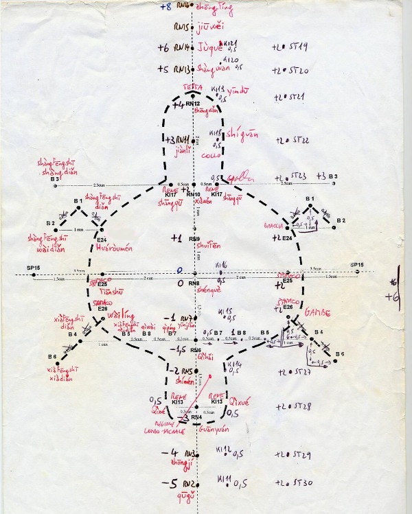 tartaruga agopuntura addominale